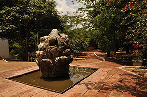 Francisco Toledo Toad Fountain at BS Biblioteca Infantil