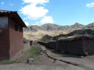 Balaban - Peru - campo