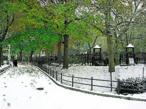 winter meets spring