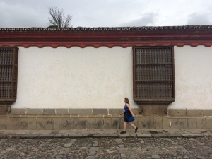 Colonial home wall - Antigua, Guatemala. Photo by MA candidate William Ramirez.