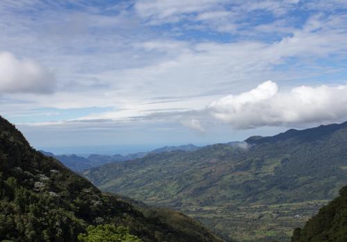 Caballero-Samper_Colombia_Llanos