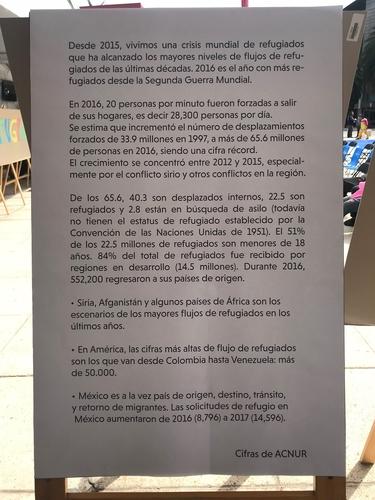 Barrett_Mexico_Migration Flow Description